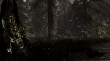 In the cold dark forest