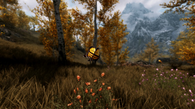 Scenic Butterfly