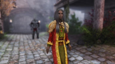 On Guard In Riften