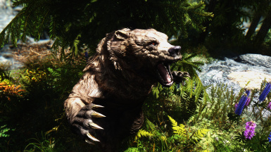 If A Bear Sings In The Woods