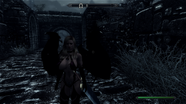 My cute character plus ENB is Awsome Skyrim
