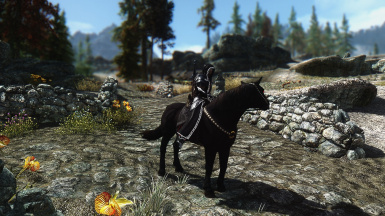 My Character and Shadowmere