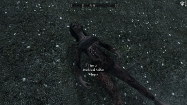 What's wrong with my Stormcloak Soldier