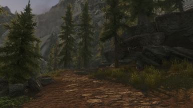 Road to Riverwood
