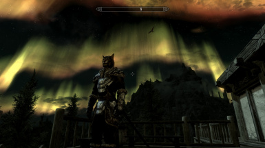 Night in skyrim