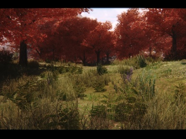 Tamriel Reloaded Flora