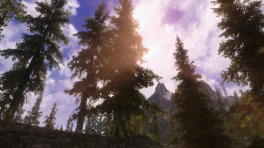 Project ENB and CoT