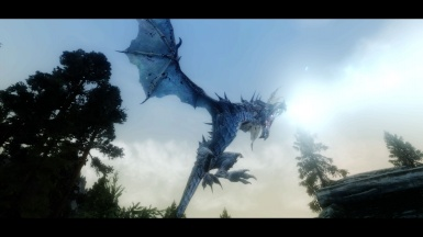 Frost Dragon Series
