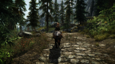 Trip to Riverwood