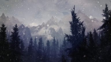 Light Snowfall in Pine Forest