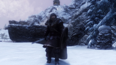 Warriors of the North