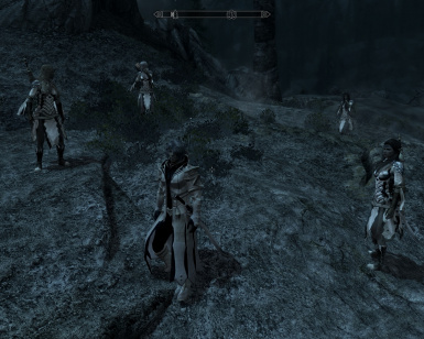 Royal Dovahkiin with 4 royal elven guards