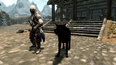 An assassin and his pet