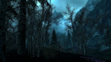 The Skyrim Wilderness