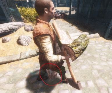 Skyrim bugged the fck out