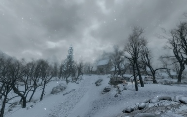 Road to Riften gate