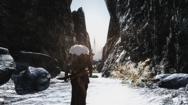 On my way to fort dawnguard