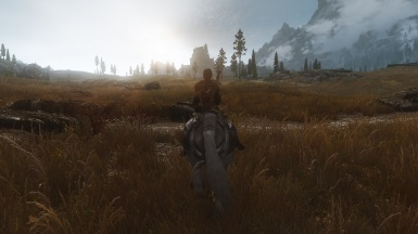 Another day with Tranquility ENB
