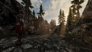 Lonely march to Falkreath