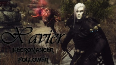 Xavier - necromancer follower