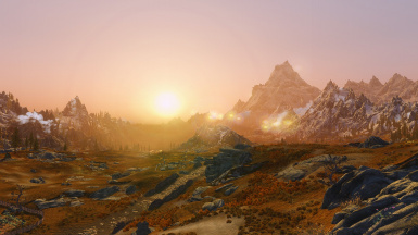 Tundra in the morning