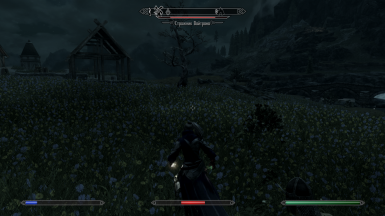 Brunhilde thought that the guards are weak She was mistaken Guards Whiterun Men Severe