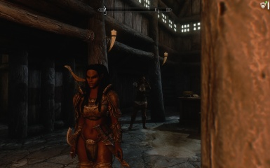 TESV SKYRIM Dark Brotherhood Assassin Inn chill