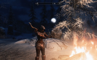 TESV SKYRIM Dark Brotherhood Assassin getting warm