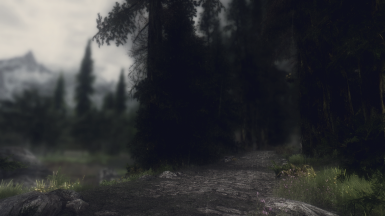 on the road to the Riften