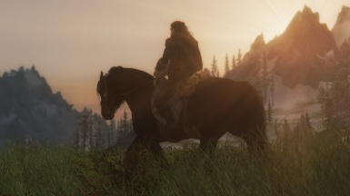 The Lone Wanderer at sunset