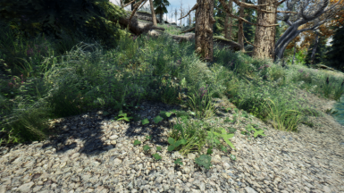 Suki's SKGE ENB Is Now Complete