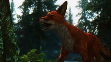 The tale of the laughing fox part 2 - A rumor heard among a sea of golden grasses