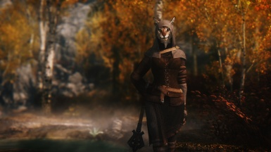 A hooded wanderer with stripes of the hues of gilded leaves