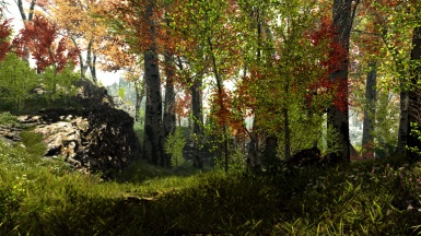 Summer Skyrim and epic trees