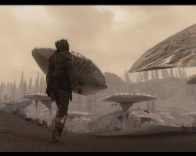 Alone in the Wastes