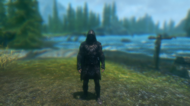 Messing with ENB