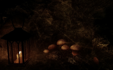 Mushrooms By Candlelight