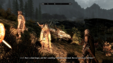 I am the Dragonborn lol
