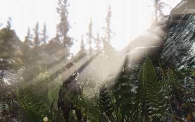 Real Vision ENB R2  Flora Overhaul