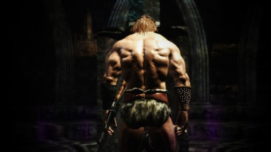 Barbarian in the Shadow