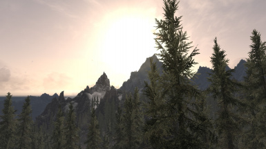 Trees on the Mountains
