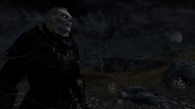 My vampire ESO style side