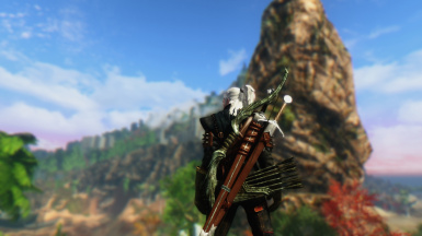 Geralt of Rivia Solitude Outskirts