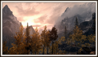 Fall Forest at Dawn