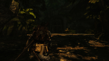The Forest of Elsweyr