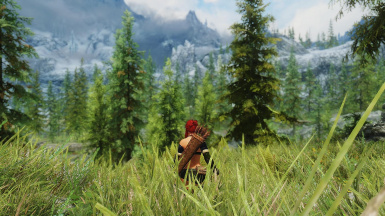Performance and realistic ENB by 32cm on my computer