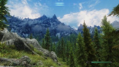 Performance and realistic ENB by 32cm