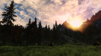 Nature around Falkreath 4