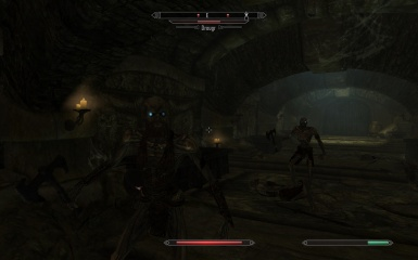 It seems there are transgenders in even the Skyrim universe