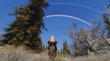 Double ring rainbow